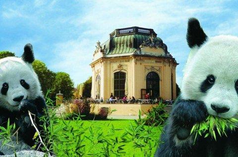 Augusztus 20-i kirándulás a Schönbrunni állatkertbe
