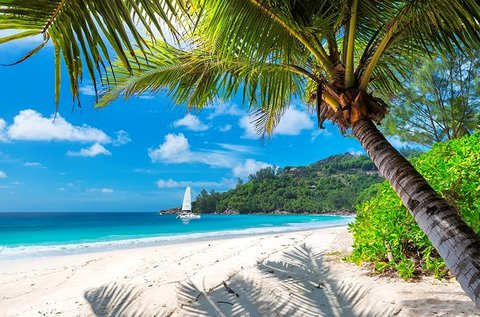 8 napos álomnyaralás a meseszép Jamaicán