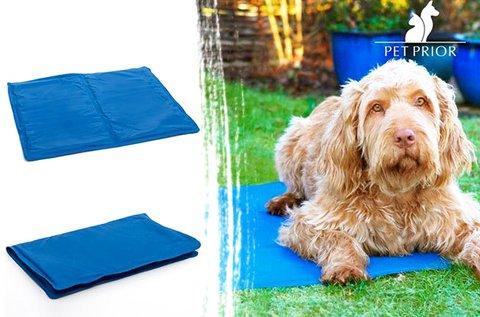 Hűsítő szőnyeg kutyáknak, macskáknak