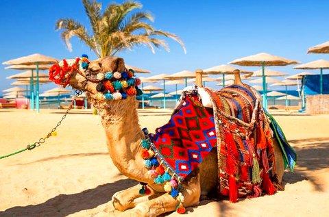 8 napos all inclusive üdülés Hurghadában repülővel
