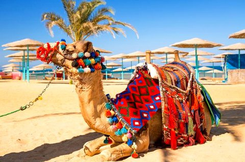 8 napos all inclusive vakáció Egyiptomban repülővel