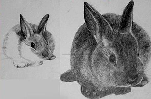 2 napos jobb agyféltekés rajzolás Szentendrén