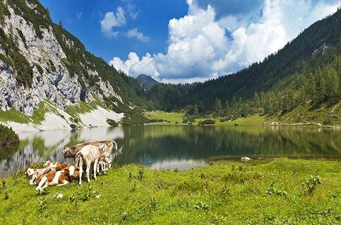 4 napos élménydús alpesi pihenés Ausztriában