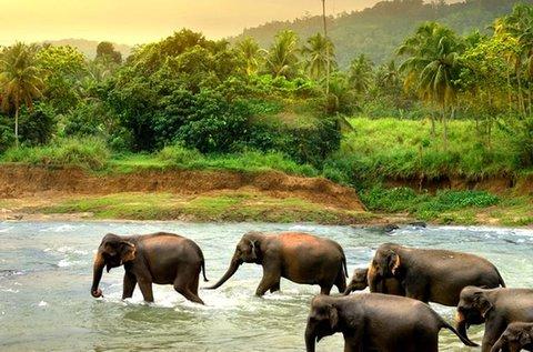 Tengerparti vakáció Srí Lankán repülővel