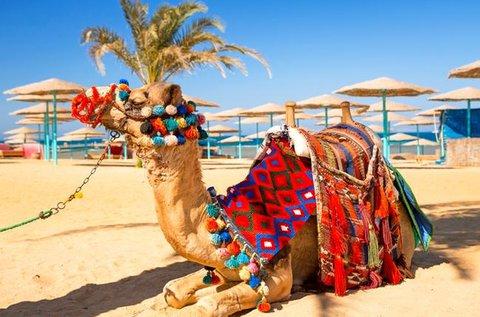 Egzotikus vakáció az egyiptomi Hurghadában