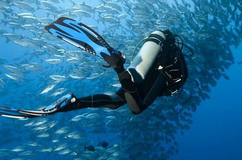 Padi nyílt vízi búvárképzés tananyaggal