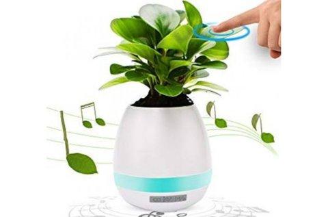 Smart Touching érintésre zenélő virág