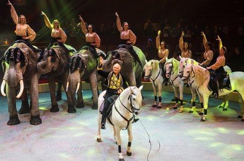 Cirkuszbelépő a 2018-as nemzetközi gálaműsorra