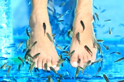 20 perces halpedikűr a pihe-puha lábakért
