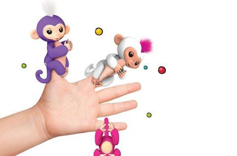 Markoló Maki a kapaszkodó majombarát