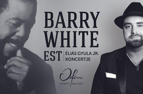 Egyedülálló est Barry White legismertebb dalaival