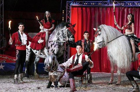 Magyar Nemzeti Cirkusz jubileumi gálaműsor belépő