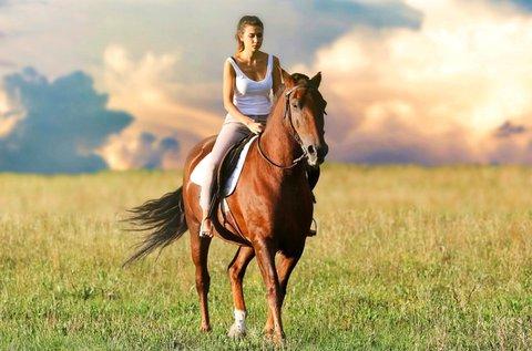 1 óra lovaglás felnőtteknek és gyermekeknek