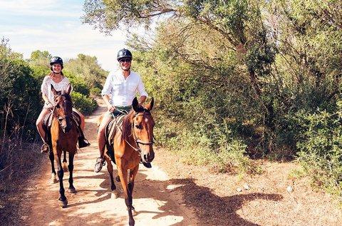 Futószáras oktatás kezdő lovasoknak 15 percben