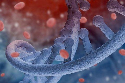 Góckutatás a rejtőzködő betegségek feltárásáért