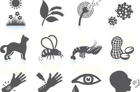 Teljes allergiavizsgálat 400 féle anyagra