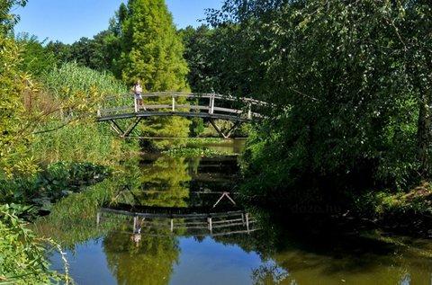 Tavaszi vagy év végi felüdülés a Tisza-tónál